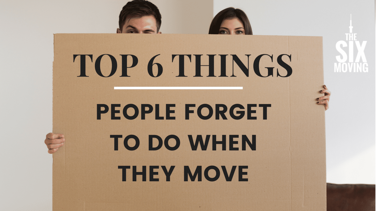 Top 6 Things